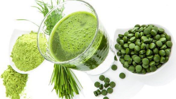 dùng tảo xoắn spirulina giảm cân hiệu quả