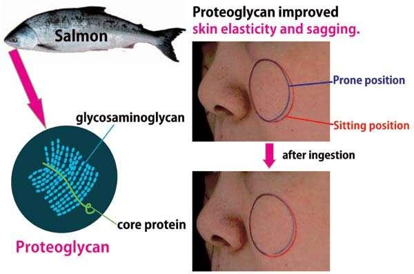 công dụng của Gel pg collagen sụn cá hồi Nhật Bản?